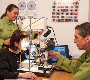 Investigare si diagnoza prin iridoscopie