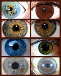 Diverse tipuri de irisuri vazute la iridoscop